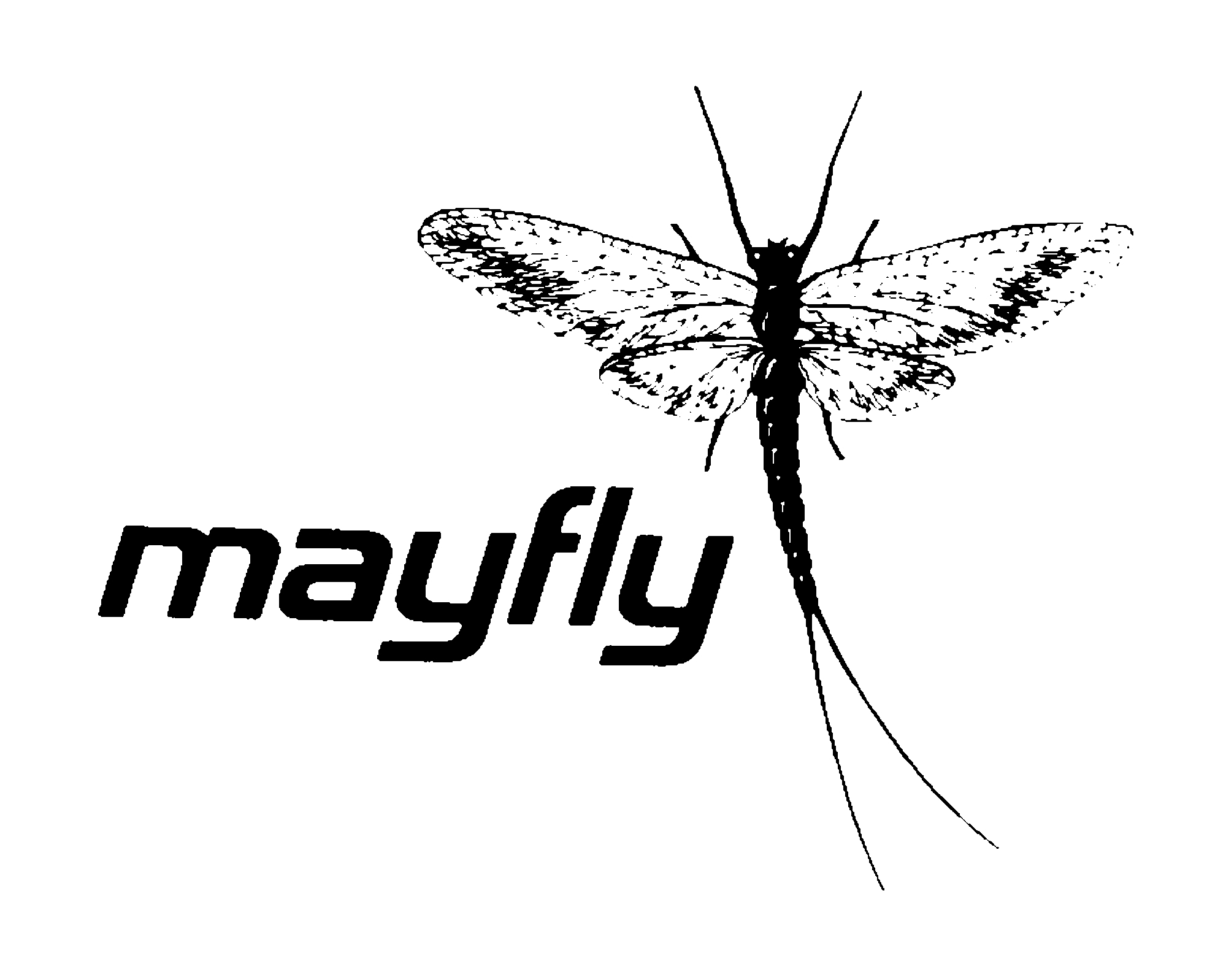 mayflyimage